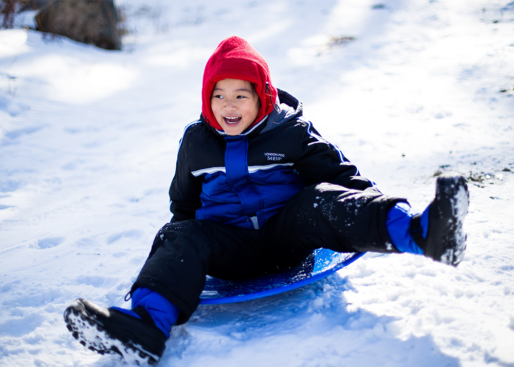 Family Day activities: sledding