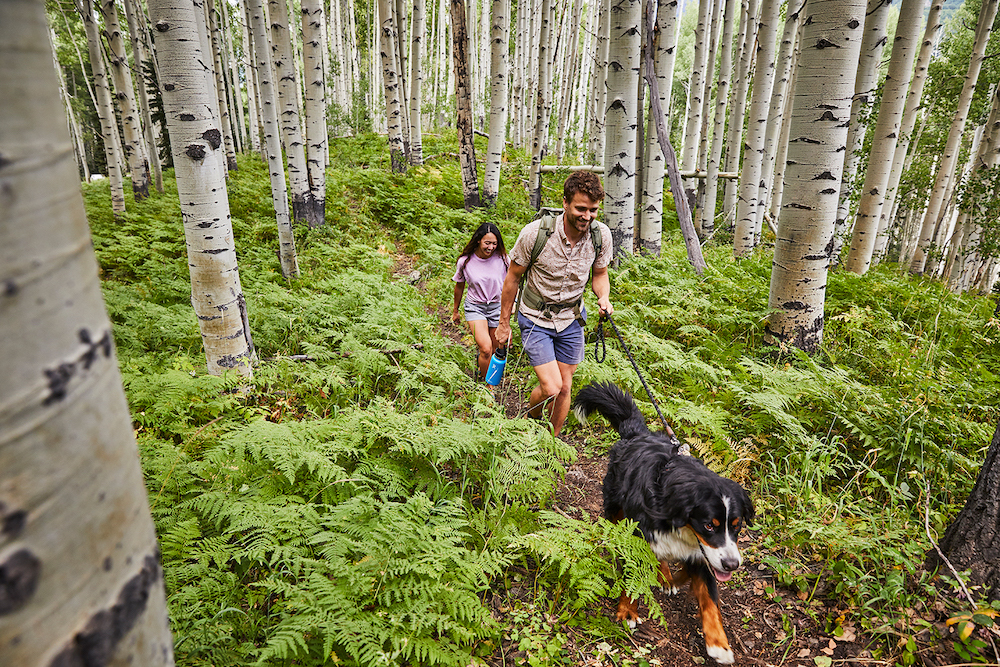 5 Hiking Tips for Beginners