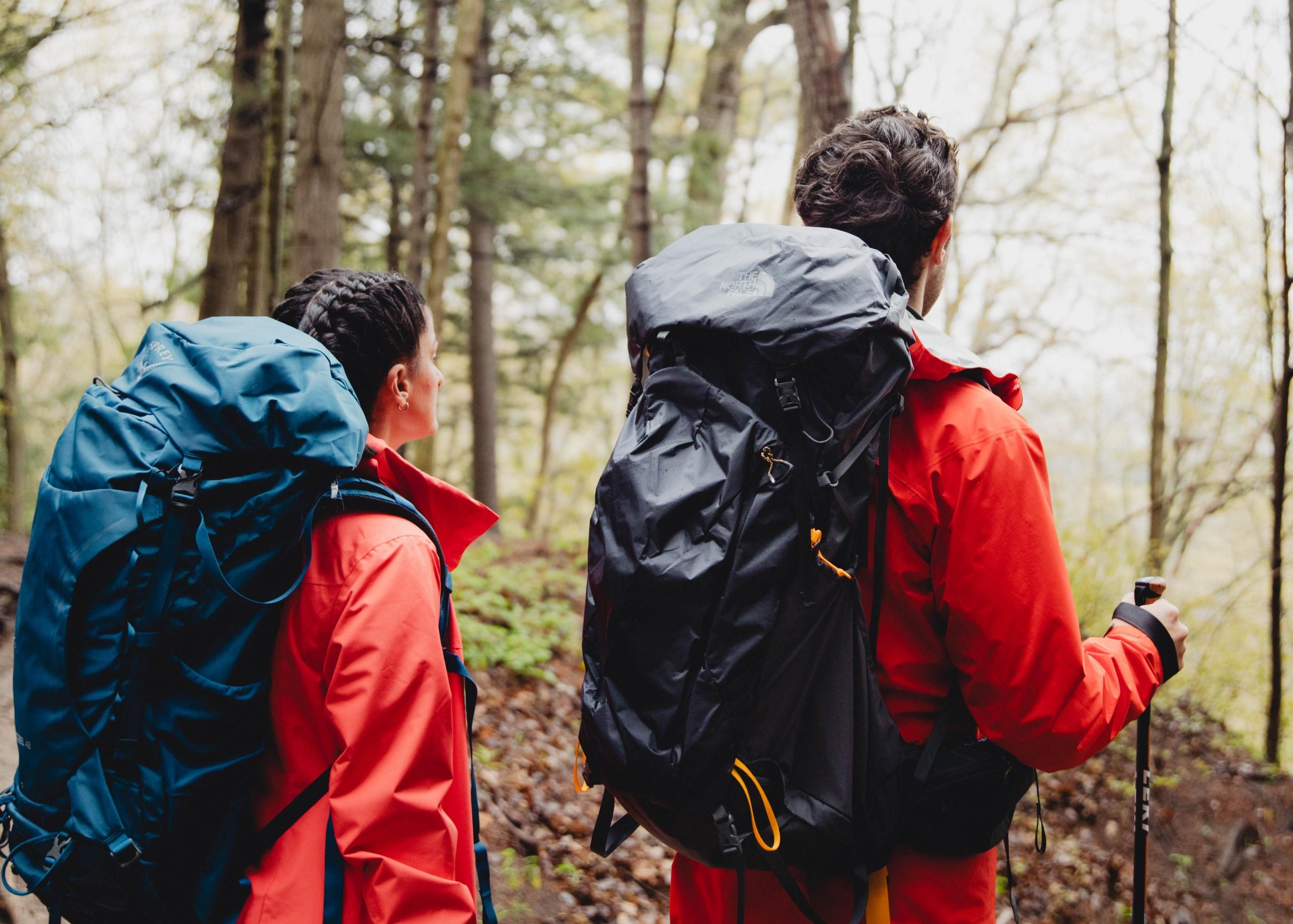 Explorez la nature en tout confort